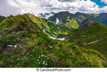 gorgeous summer landscape in mountains. grassy slope with...