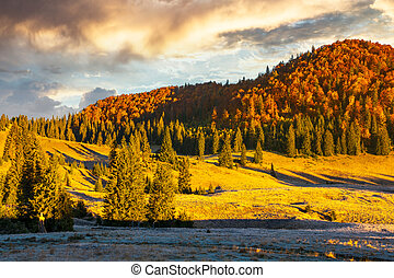 gorgeous sunrise in mountains. forest in fall color. distant...