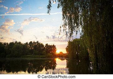 gorgeous sunset on a small fishing lake