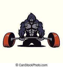 gorila, bodybuilder, barbell