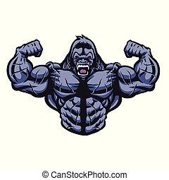 gorila, bodybuilder, ilustração, executa