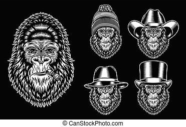 gorila, caracteres, fumar, colección