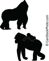 gorilas, silueta
