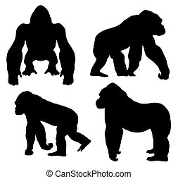 Gorilla - Abstract vector illustration of gorilla...