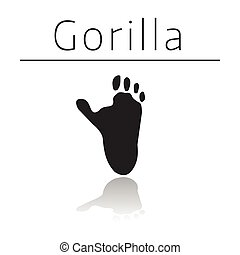 Gorilla animal track with name and reflection on white ...
