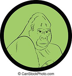 Gorilla Face Closeup Vector