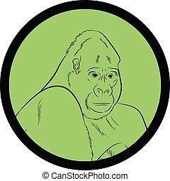 Gorilla Face Closeup Vector