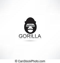 gorilla, in, brille