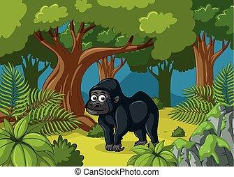 Gorilla living in deep forest