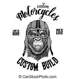 Gorilla, monkey, ape Biker, motorcycle animal. Hand drawn...