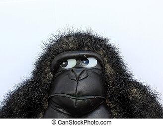 gorilla, teddy