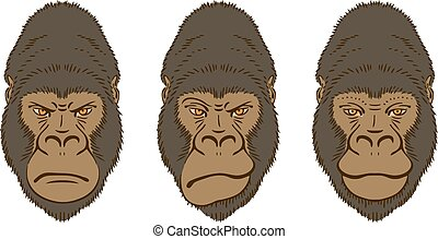 Gorilla's Mimic, Three Portraits Isolated on White. Vector illustration.