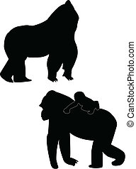 Gorillas silhouette - vector