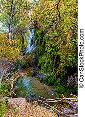 Gorman Falls in Autumn, Texas.