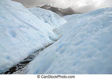 gorra, meridional, hielo, patagonia