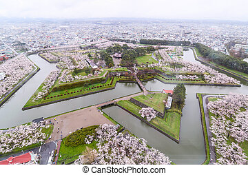 Goryokaku Park Top view where is star of building