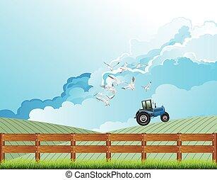 gospodarcze pole, traktor, pracujący