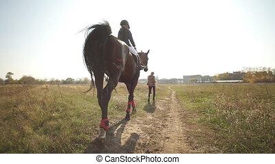 gosse, girl, day., dos, cheval cavalier, équitation, vue, peu, lent, horse., brun, par, jockey, grand plan, formation, marche, purebred, mouvement, ensoleillé, outdoor., pré