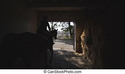 gosse, girl, stable., dos, cheval, paddock., cavalier, équitation, vue, peu, training., lent, cheval, brun, préparer, jockey, grand plan, marche, purebred, mouvement