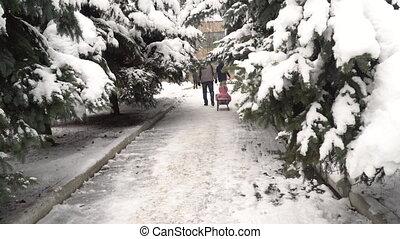 gosse, jeune, week-end, traîneau, park., hd, vidéo, porte, forêt, ou, neigeux, mouvement, heureux, parent