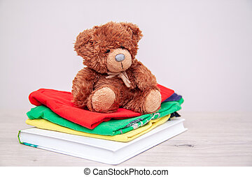gosses école, copyspace, teddy, livres, choses, concept., vêtements, donation, toys., bear., text., fournitures, donner