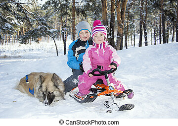 gosses, hiver, séance, chien, suivant, bois, traîneau, run.