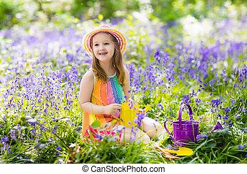 gosses, jardin, jacinthe des bois