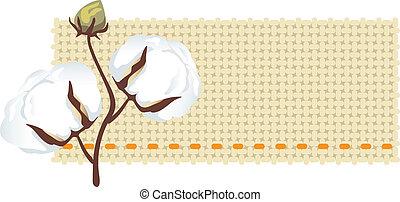 (gossypiu, tecido, ramo, algodão