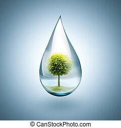 gota água, com, árvore, dentro