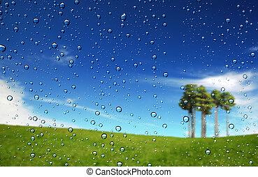 gotas, de, agua, en, el, vidrio
