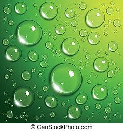 gotas del agua, en, verde