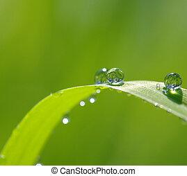 gotas del agua