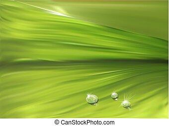 gotas, folha, superfície
