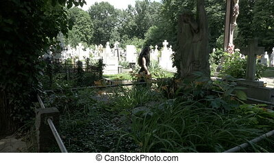 Gothic depressed girl leaning on crying angel statue in cemetery full of trees and vegetation moment of silence