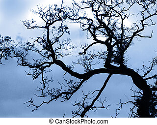 Gothic tree - A tree which has lost its leaves and is bent...