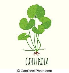 Gotu Kola icon in flat style isolated on white.