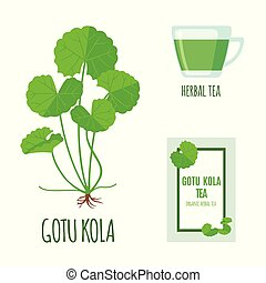 Gotu Kola set with tea package and cup of tea in flat style isolated on white.