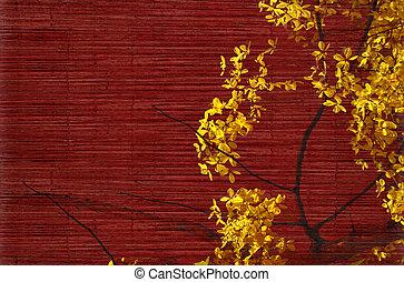 gouden, douche, boompje, blossom