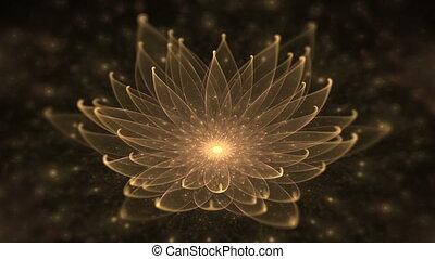 gouden, lotus, waterlelie