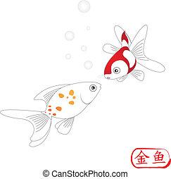 gouden, visje, witte achtergrond