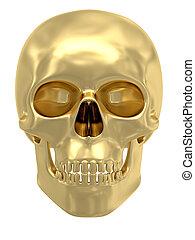 gouden, witte , vrijstaand, schedel