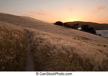 gouden zonsondergang, velden