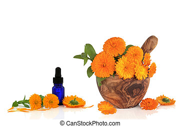 goudsbloem, bloem, essentie