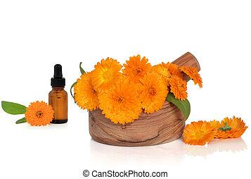 goudsbloem, bloemen, en, essentie
