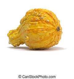 Gourd Isolated on White Background