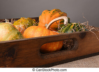 Gourds and Decorative Pumpkins in Wood Box