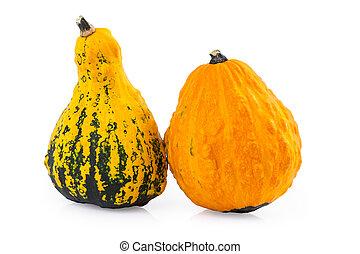 gourds pumpkin decorative