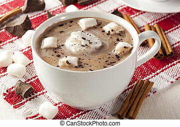 Gourmet Hot Chocolate with marshmellows and cinnamon