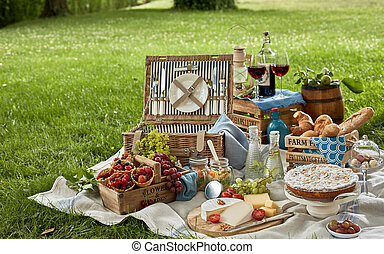 Gourmet picnic lunch in a park