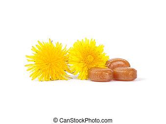 gouttes, fleurs, toux, pissenlit